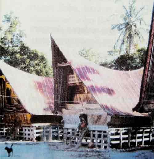 rumah-adat-suku-batak-toba