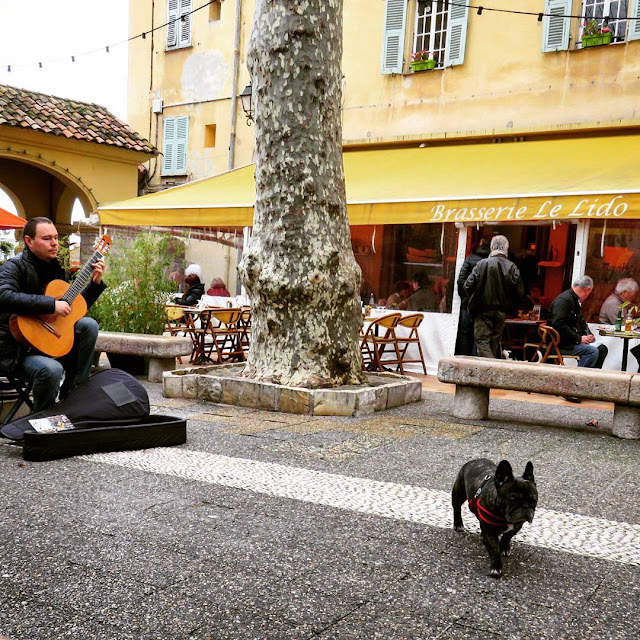Things to see in Menton France: guitarist and dog
