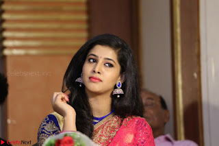 Lavanya in Red Saree at With Love Boys Movie First Look Launch 5th May 2017  Exclusive 017.JPG