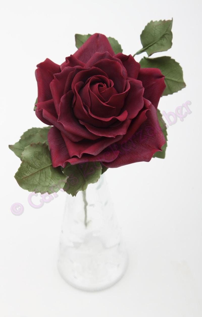 Caros Zuckerzauber Blog  Zuckerblumen Motivtorten und vieles mehr Dunkelrote Rose