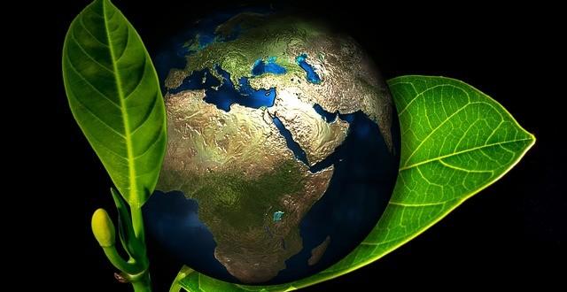 Ο ετήσιος κύκλος χλωρίδας στη Γη σε animation