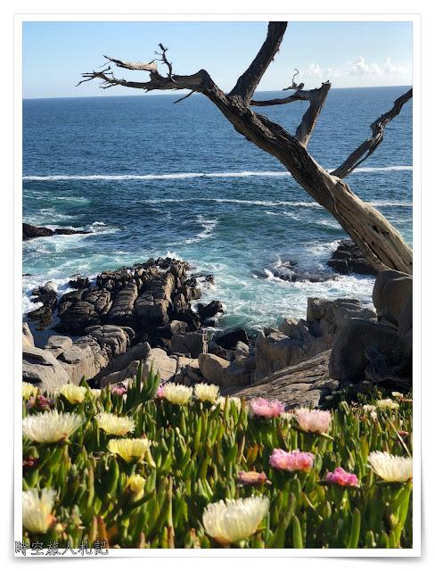 Monterey 17 miles drive 15