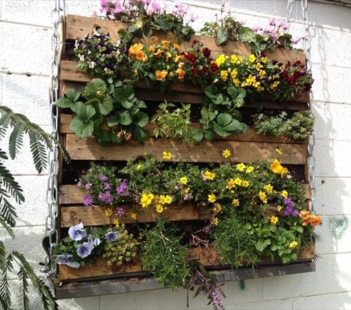 Pallet Garden Ideas for Your Wall