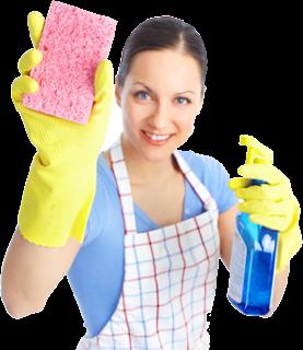 Adana Temizlik Şirketi seo hizmeti