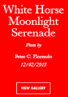 Vogue Italia White Horse Moonlight Serenade by Avianquest a.k.a. Peter C. Florendo