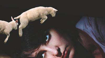 Battre l'insomnie avec des graines de lotus : potion maison anti-insomnie