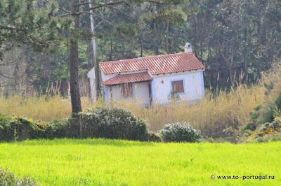кто присматривает за домами в Португалии