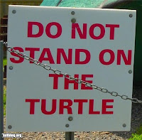 strange warning sign - do not stand on the turtle