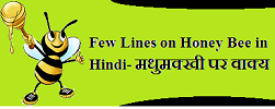 Few Lines on Honey Bee in Hindi