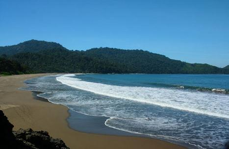 Tempat wisata pantai palengkung di banyuwangi