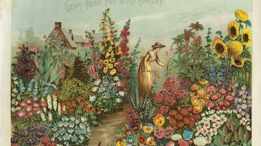 Cuando los catálogos de semillas vendían sueños y jardines