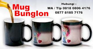 Cetak foto / logo pilihan anda di mug magic / mug bunglon