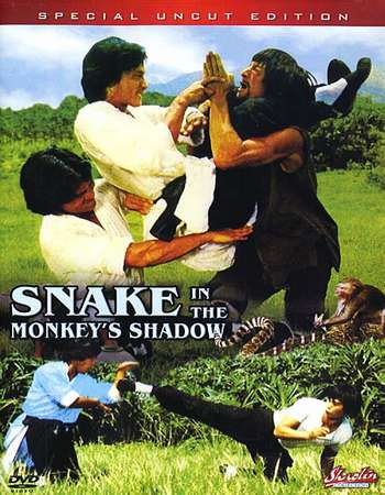 Snake In The Monkey's Shadow 1979 Dual Audio 130MB DVDRip HEVC Mobile