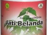 Kapsul Jati Belanda 081230855989 Herbal Pelangsing - Diet di Surabaya - Sidoarjo