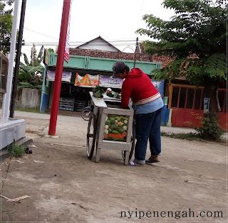 Ibu Penjual Rujak&Lotek Keliling yang Sederhana