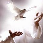Força interior, a eternidade está em nossas mãos