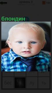 Портрет ребенка блондина в клетчатой рубашке и темный галстук