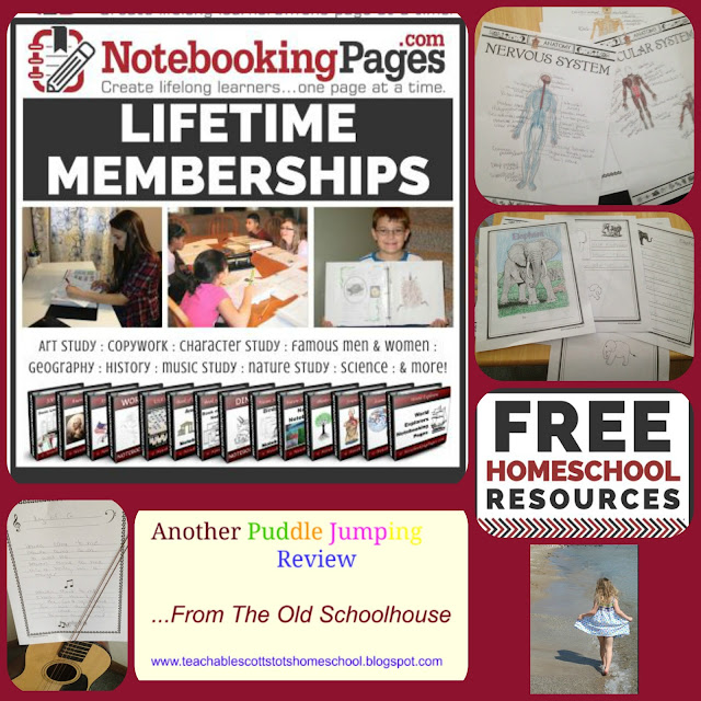 #hsreviews #notebooking #journaling, notebooking, journaling, homeschool notebook pages