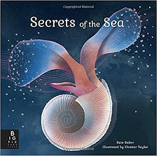 Review of Secrets of the Sea, sea life, ocean creatures, plankton