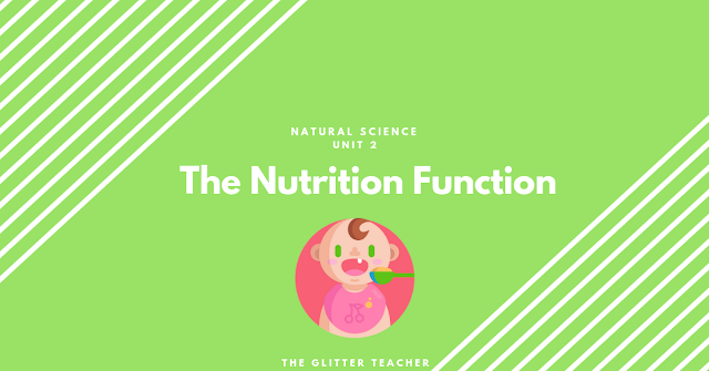 Study Unit: The Nutrition Function. Natural Science Year 6