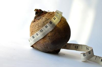 buah bit untuk diet