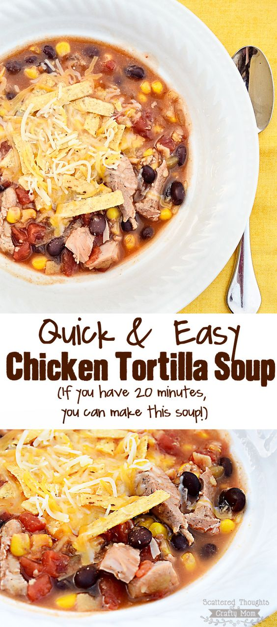 Spice filled broth, yummy chicken and veggies come together perfectly in this amazing 20 Minute Chicken Tortilla Soup!