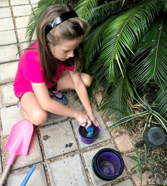 Girl busy planting succulents