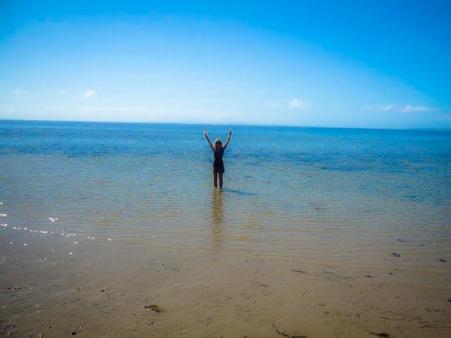 beach kangaroo island