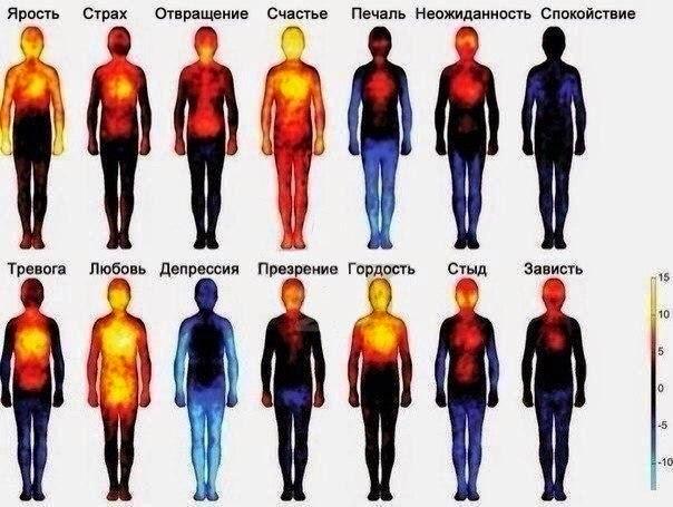 Тепловая карта, показывающая, как мы чувствуем эмоции.
