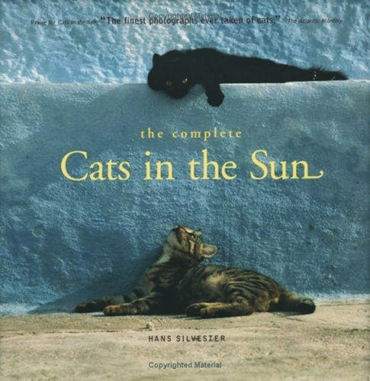 The Complete Cats In The Sun Hans Silvester