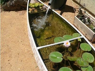 Perahu kayu bekas digunakan sebagai kolam bunga di halaman belakang rumah.