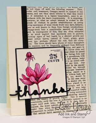 Stampin' Up! Helping Me Grow stamp set. Typeset Paper. Hot Pink Flower with Black and Vanilla. Handmade card by Lisa Young, Add Ink and Stamp