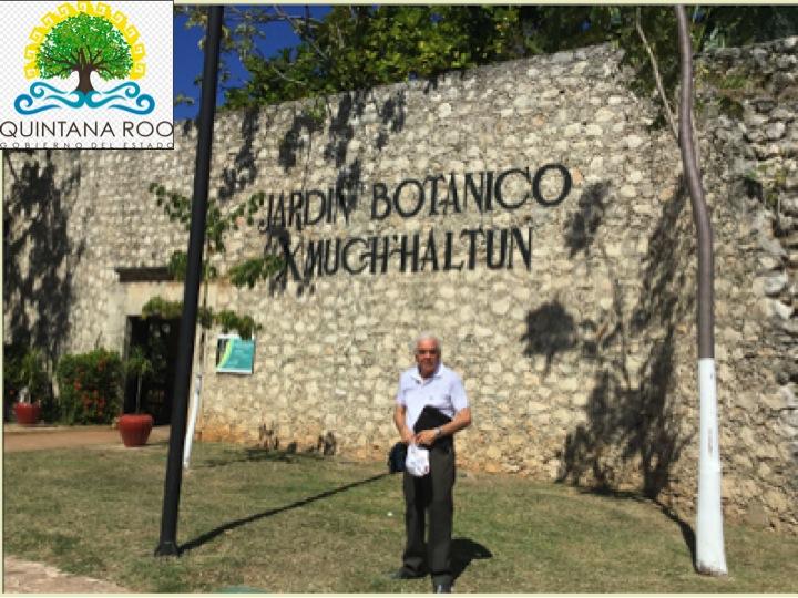 Pap beto y cuc enero 2017 for Jardin botanico xmuch haltun