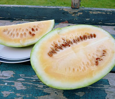 Sweet Siberian Watermelon