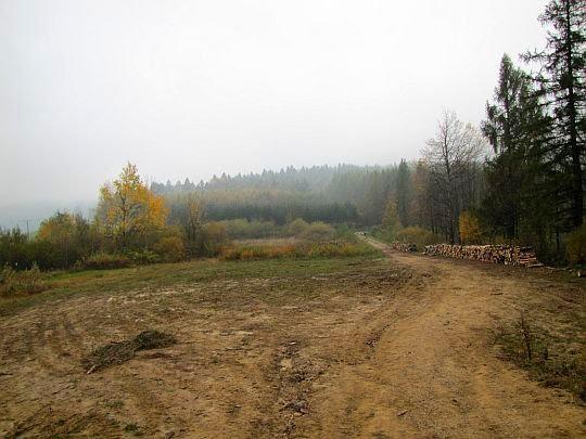 Przełęcz oddzielająca Krzemionkę i Kiczerę.