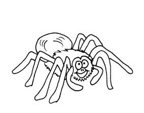 Coloring Pages Zoo Spider