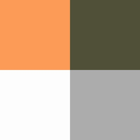 Color Combinations So For This Week S Style Board I Decided To Pair A Light Citrusy Orange With Shade Of Olive Often Called Military Green