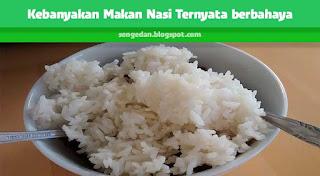 Kebanyakan Makan Nasi Ternyata berbahaya