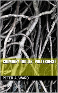 Criminey Toodle: Poltergeist - a pre-teen fantasy chapter book by Peter Alward