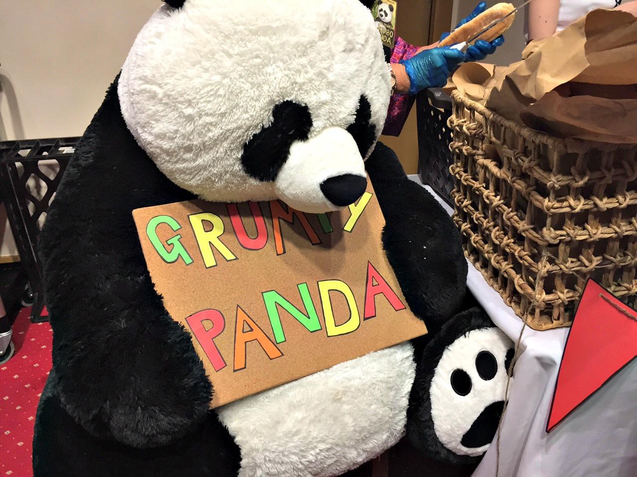Grumpy Panda at NEVfest