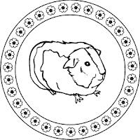 Malvorlagen Zum Ausmalen Malvorlagen Tiere Meerschweinchen Mandala