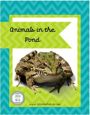 http://www.biblefunforkids.com/2018/07/god-makes-pond-animals-ducks.html
