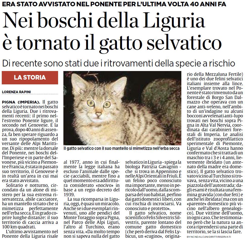 Alassiofutura Pigna Imperia Nei Boschi Della Liguria è Tornato