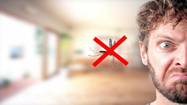 7 tips cara mudah membuat rumah bebas dari nyamuk