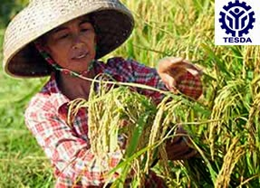 List of TESDA Accredited Assessment Centers for Agricultural Crops Production NC I and III