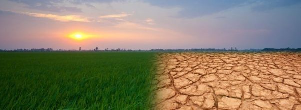 Apa itu Climate Change atau Perubahan Iklim ?