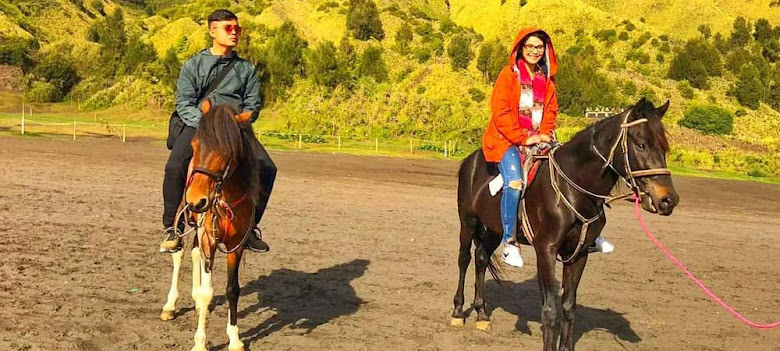 Foto selfie dengan kuda bromo