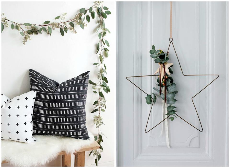 Deco: Deco avec plantes I:  Eucaliptus