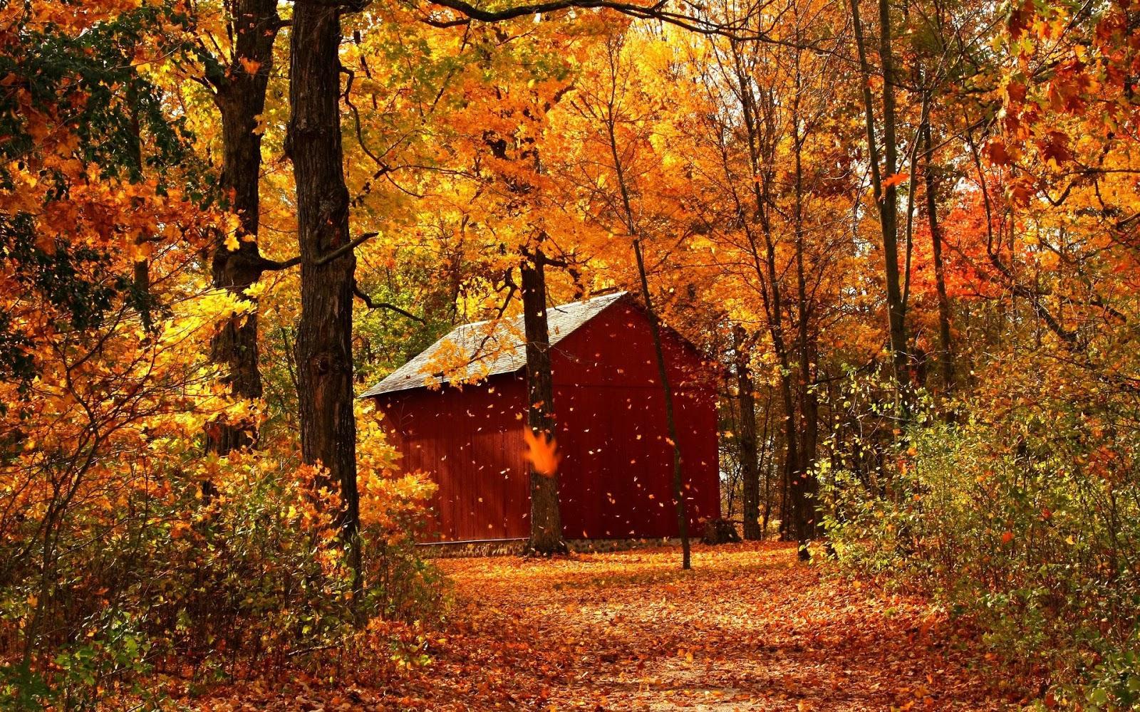 Fond d 39 cran automne hd gratuit fond d 39 cran hd for House image full hd