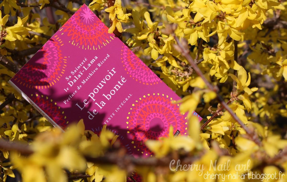 Box Quejadore Rêve de printemps